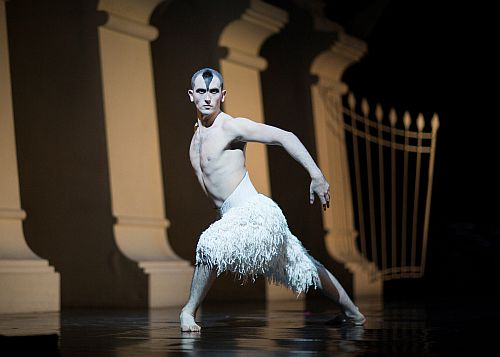 Chris Trenfield as The Swan in Matthew Bourne's Swan Lake.  Photo by Helen Maybanks