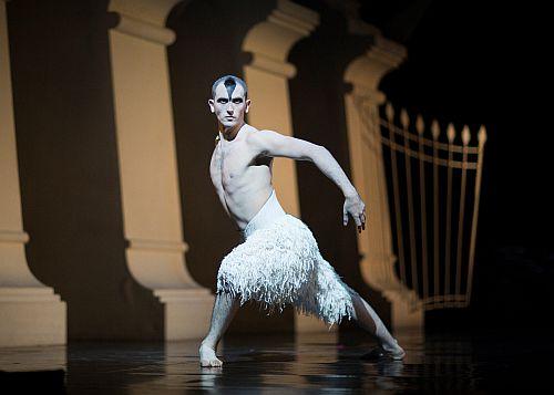 Chris Trenfield as The Swan in Matthew Bourne's Swan Lake.  Photo by Helen Maybanks