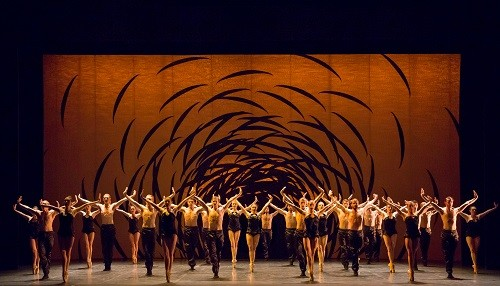 Scottish Ballet Company in Emergence by Crystal Pite. Photo by Andy Ross.