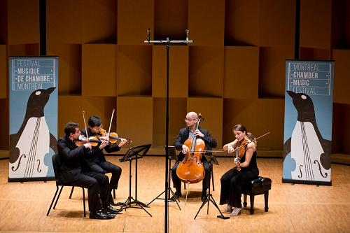 Dover Quartet at the Montréal Chamber Music Festival (Photo: Victor Brott)